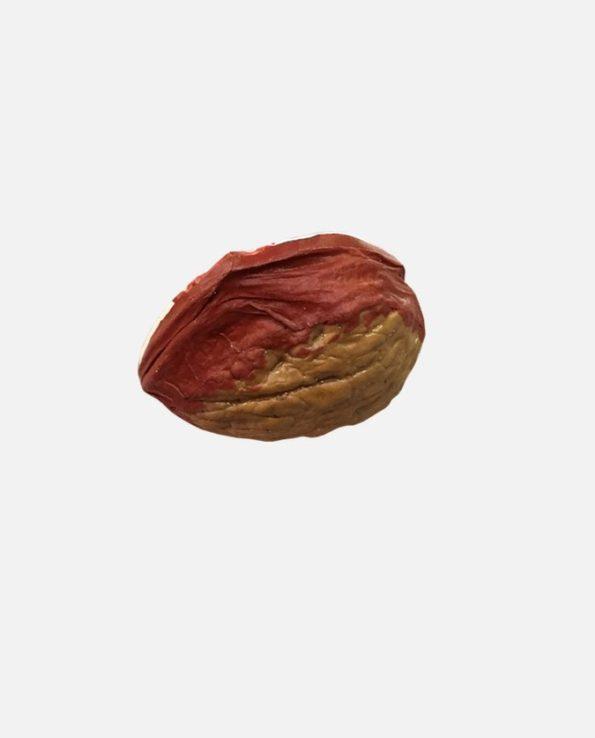 Crèche de Noël mexicaine miniature en coquille de noix