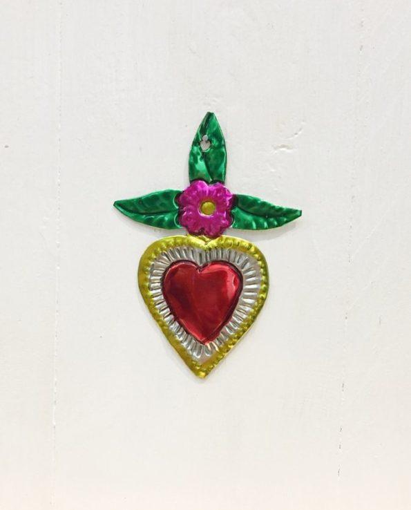 Coeurs sacré mexicain grandes feuilles