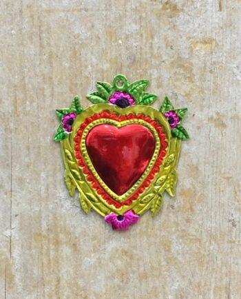 Coeur sacré mexicain - Feuilles et rameaux
