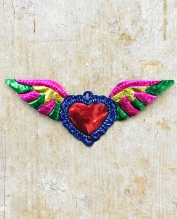 Coeur sacré mexicain - Ailé bord bleu